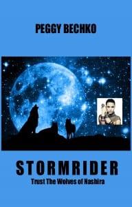 STORMRIDER-PBK-cover-final