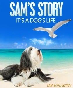 Smashwords-cover-Sams-Story